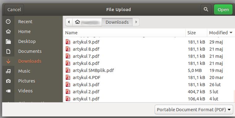 Widok katalogu plików. Na liście znajduje się wiele plików pdf.